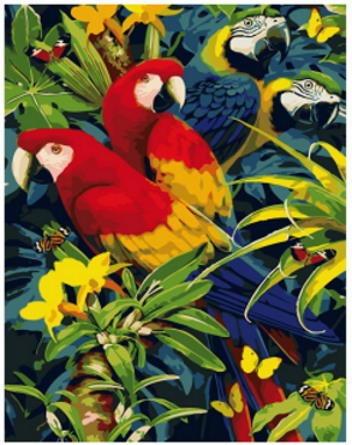 Pintura Numerada Araras Coloridas Modelo 1