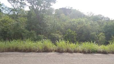 Propriedade Rural-ponte Alta Do Tocantins-setor Central | Ref.: 268-im311187 - 268-im311187