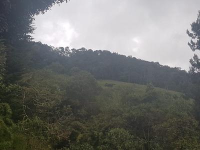 Lote En Venta La Trinidad-vereda Santa Helena