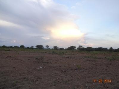 Fazenda A Venda Marianópolis - To,(pecuária, 240 Alq. Soja) - 483