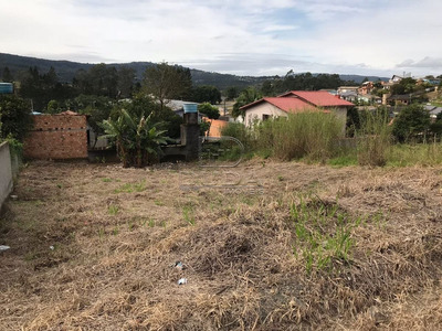 Terreno - Vila Sao Jorge - Ref: 22759 - V-22759