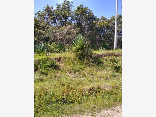 Imagen 1 de 6 de Terreno En Venta Yelapa