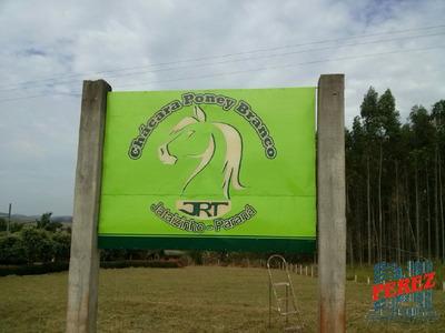 Chácaras/sítios/fazendas Para Venda - 13650.3912