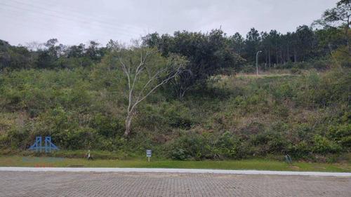 Terreno À Venda, 473 M² Por R$ 711.000,00 - Itacorubi - Florianópolis/sc - Te0224