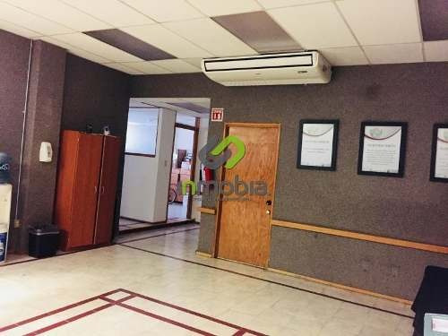 Oficina Comercial En Renta La Barranca De Guadalupe