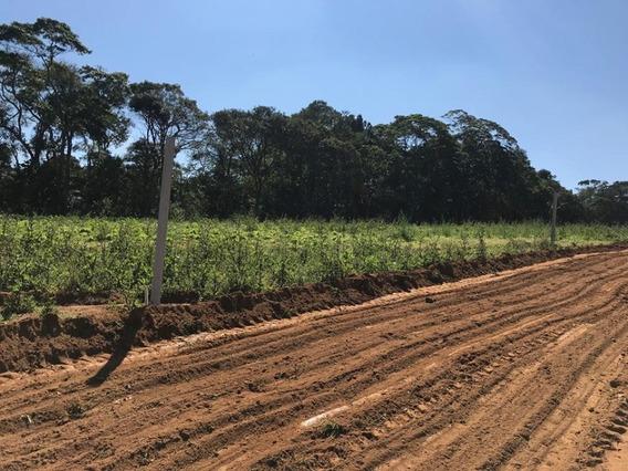 Vendo Terrenos Em Ibiúna Sp 1200 M2 Demarcados E Planos J