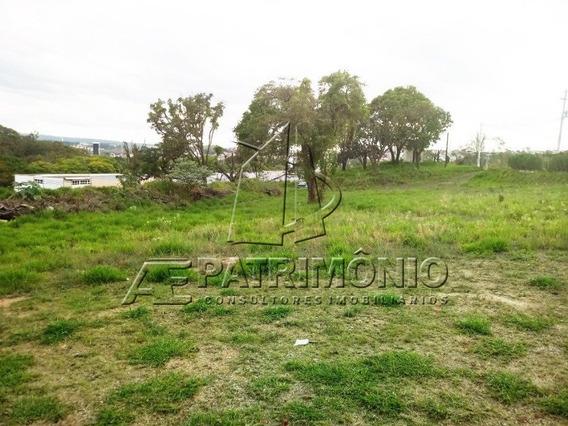 Area - Centro - Ref: 51527 - V-51527