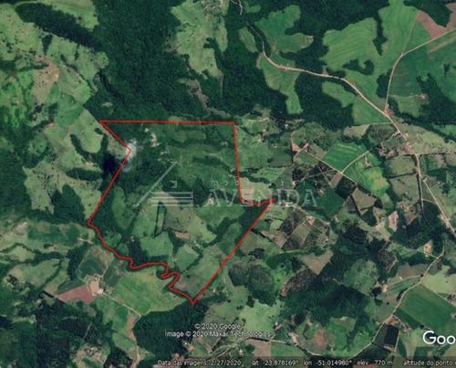Imagem 1 de 2 de Sitio - Centro - Ref: 4064 - V-1270