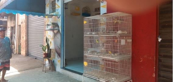 Casa De Ração Pet Shop