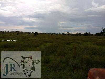 Área Rural Para Venda Em Santa Rita Do Pardo - Eb06