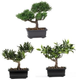 Nearly Natural 4122 Colección De 3 Plantas Decorativas De S