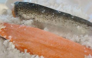 Filet De Salmon Rosado Sin Espinas X Kg.