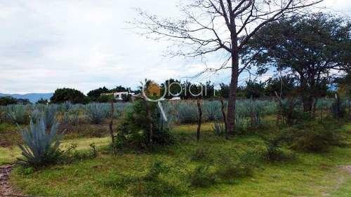 Terreno En Venta Frente Al Campo De Golf En Coayuca, Chietla