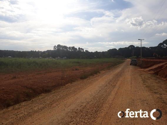 Terreno - Centro - Ref: 526 - V-526