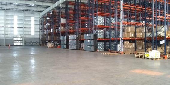 Depósito Premium 14.000 M2 Racks Y Rociadores