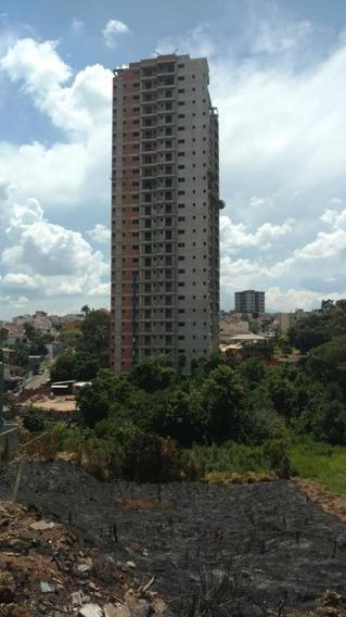 Apartamento À Venda No Medicina, Pouso Alegre. - Ap296v
