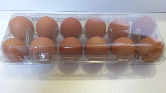 Embalagem Para 12 Ovos De Galinha 100 Unid