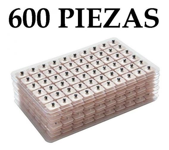600 Parches Semilla Vaccaria Acupuntura - Envío Gratis