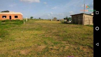 Terreno Campo No Meio - Te0182