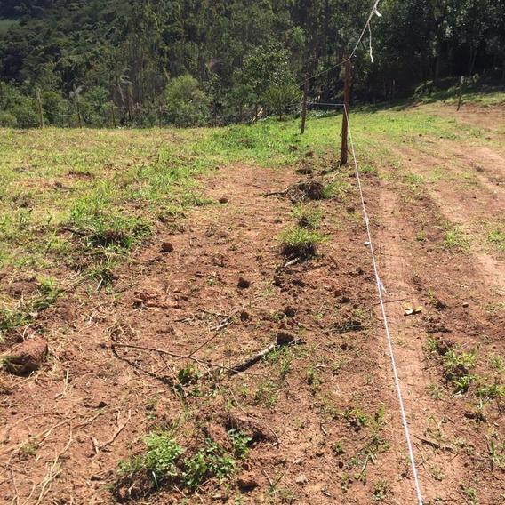 30 Terreno Sem Consulta Spc Ou Serasa