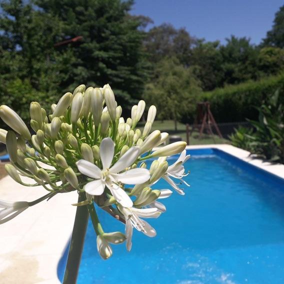 Alquiler Temporal Casa Quinta Fin De Semana Y Vacaciones !!!