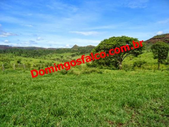 Venda - Fazenda - Zona Rural - Pedra Preta - Mt - D0808