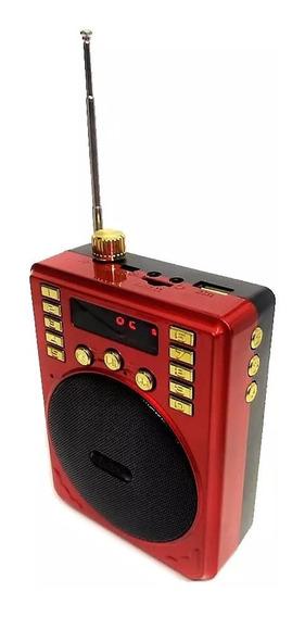 Megafono Microfono Diadema Usb Fm Bocina Portatil Recargable /e