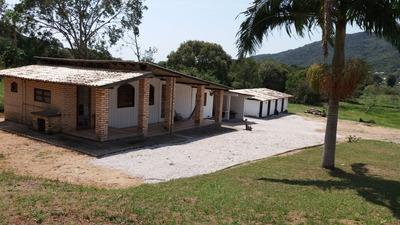 Sítio Para Venda No Vargem Grande Em Florianópolis - Sc - V632