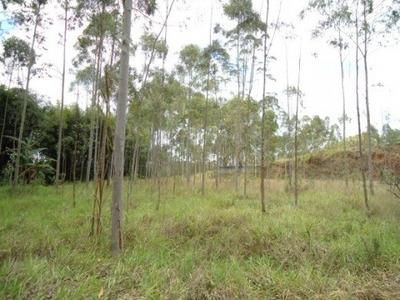Venda Área Mogi Das Cruzes Brasil - 9083