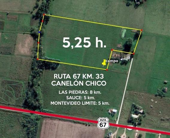 Chacra Campo Canelón Chico 5,25 Ha. Ideal Vivienda Descanso