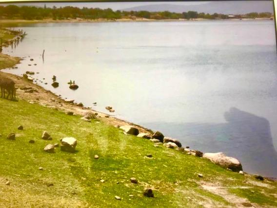 Terrenos En Miacatlán Morelos (frente A Lago Rodeo)