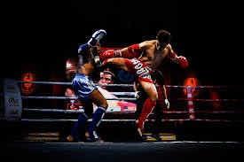Aula Muay Thai Power Lótus Team