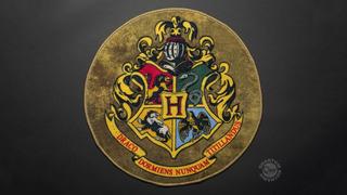 Harry Potter Tapete Decorativo Escudo Hogwarts Hogar