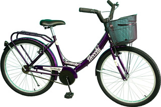 Bicicleta Paseo De Dama R 24 Necchi Cuestarriba