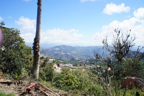 Terreno En Venta Carmen Salcedo Codigo- Mls #15-6947