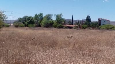 Terreno Campestre En Fraccionamiento Granjas San Carlos De 1,058 M2