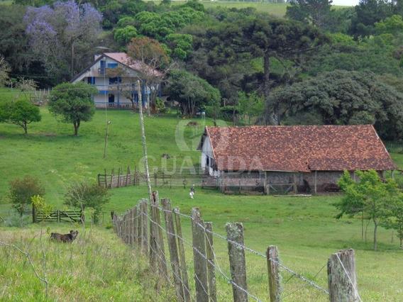 Sitio - Itapua - Ref: 150148 - V-150148