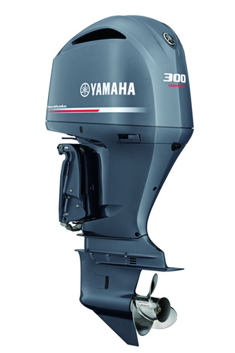 Yamaha Fl300 Detx  4t Pessoa Física(exceto Mg)