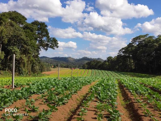 Otimos Terrenos De 1.200 M2 Plano Demarcado 33 Mil Tl
