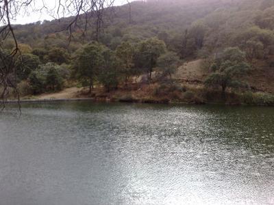Terreno Boscoso Colinda Con Presa Agua De Manantial