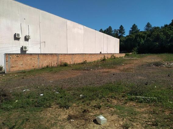 Terreno Em Distrito Industrial, Cachoeirinha/rs De 0m² À Venda Por R$ 700.000,00 - Te181032