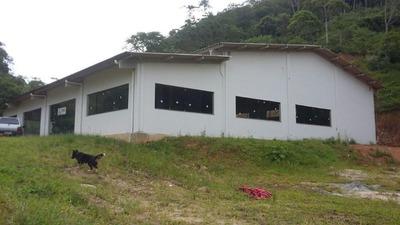 Galpão Em Guarda Do Cubatão, Palhoça/sc De 620m² À Venda Por R$ 850.000,00 - Ga187863
