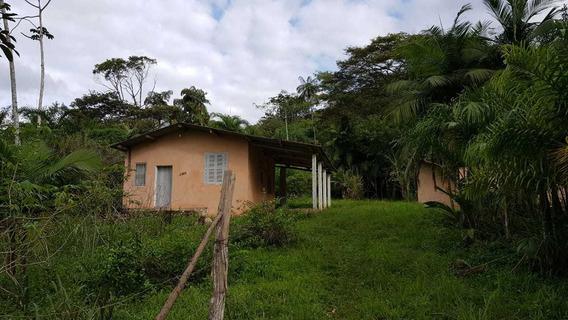 Juquiá/casa Sede/caseiro/nascente/morar/plantar/ Ref :04946