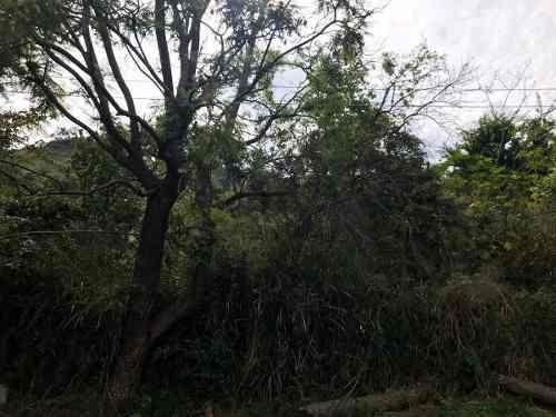Terreno En Venta En Las Cañadas
