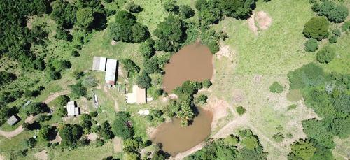 Imagem 1 de 14 de Fazenda - Jaranapolis- 52 Alqueires - Infraestrutura Complet - 16
