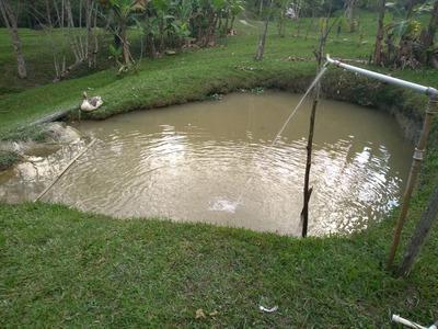 Chácara/sede/piscina/nascente/lago/ac/permuta/ref:04831