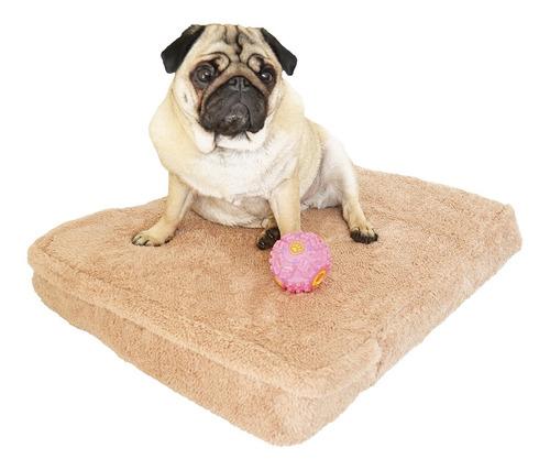 Imagen 1 de 7 de Cucha Perro Cama Para Perros Corderito 50x80 Espuma Beige