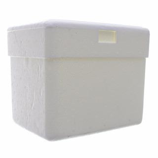 Caixa Térmica De Isopor Capacidade 36 Litros Isocamp C/ Al