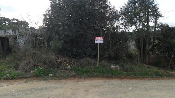 Terreno Para Venda Em Campo Largo, Jardim Das Acacias - 220030063 Camelias
