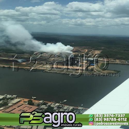 Imagem 1 de 9 de Fazenda À Venda, 120.000 Hectares Por R$ 999.999.999 - Pa - Fa0162